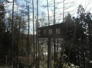 Kikou321